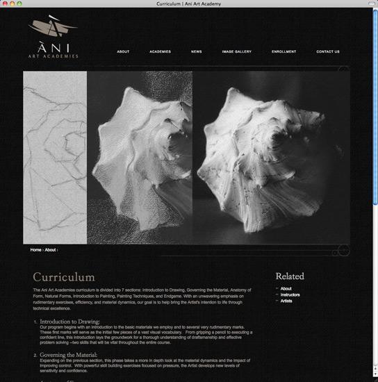 Ani Art Academies curriculum page