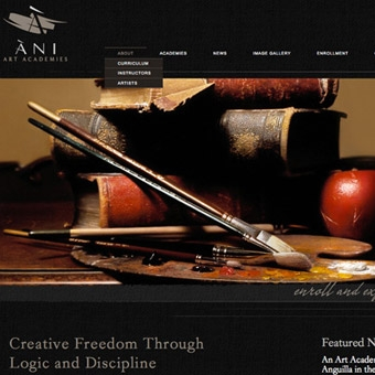 Ani Art Academies Website